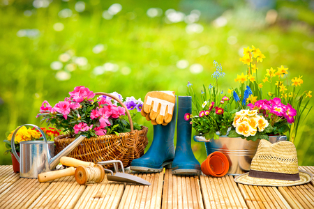 Gardening tips for Lake Travis and Austin